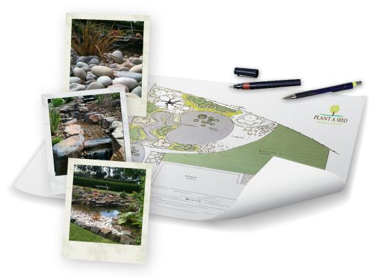 Bideford, Devon Garden Design Portfolio by Plant A Seed