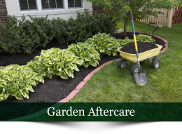 Plant A Seed Garden maintenance & contract services