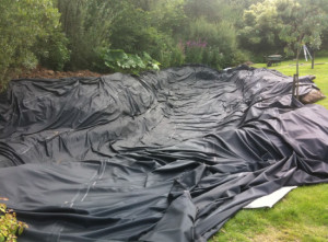 Before lining pond