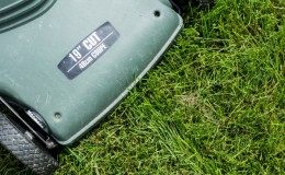 Why you should cut your grass before the frost
