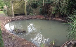 Zeal Monachorum pond renovation