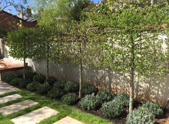 St Leonards Exeter Garden Design Plant A Seed Garden Design