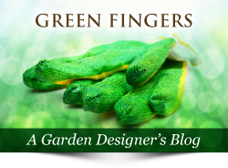 Link to 'Green Fingers' the Devon Garden Designer's Blog