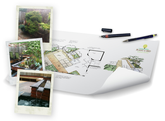 HorseGuards, Exeter Garden Design Portfolio by Plant A Seed